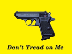 If you like this Gadsden flag, click on it to enlargeit...then you can save it for future use.